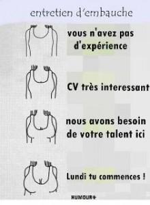 cv_femmes