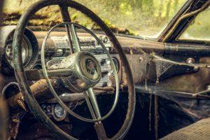 araignée dans voiture